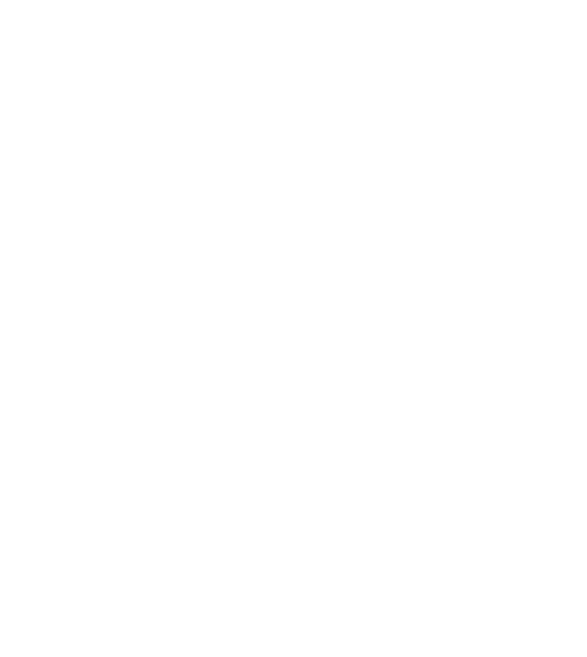 Eichstätt Basketball